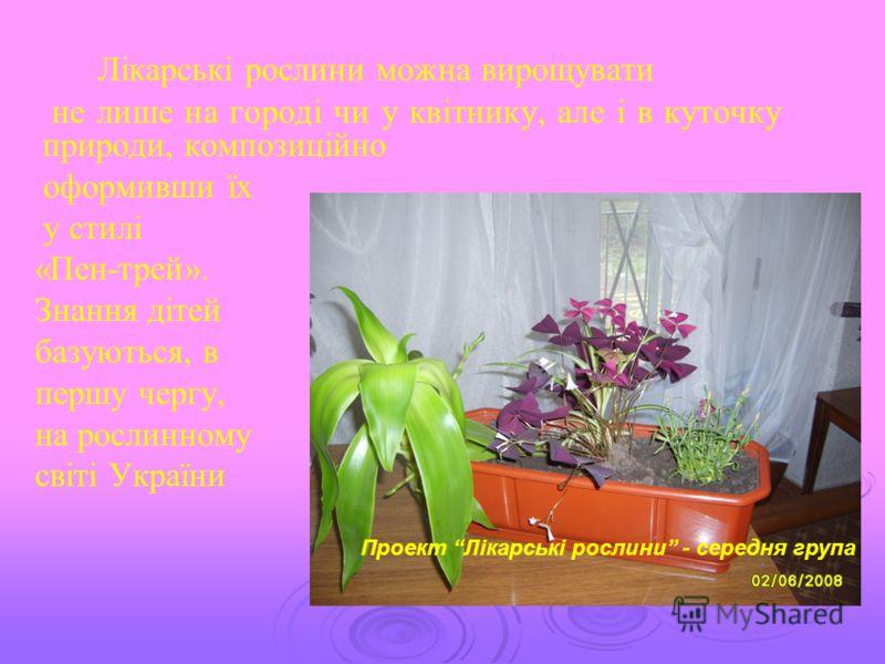 Лікарські рослини можна вирощувати не лише на городі чи у квітнику, але і в куточку природи, композиційно оформивши їх у стилі «Пен-трей». Знання дітей базуються, в першу чергу, на рослинному світі України Проект Лікарські рослини - середня група