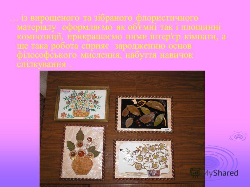 … із вирощеного та зібраного флористичного матеріалу оформляємо як об'ємні так і площинні композиції, прикрашаємо ними інтер'єр кімнати, а ще така робота сприяє зародженню основ філософського мислення, набуття навичок спілкування.