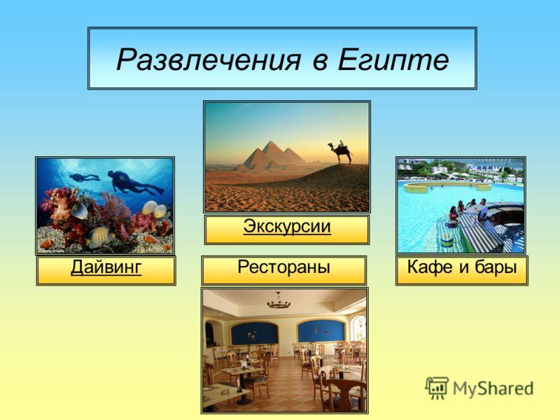 Развлечения в Египте Дайвинг Экскурсии Кафе и бары Рестораны