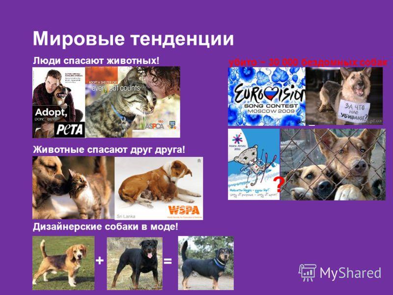 Мировые тенденции убито ~ 30 000 бездомных собак ? Люди спасают животных! Дизайнерские собаки в моде! + = Животные спасают друг друга!