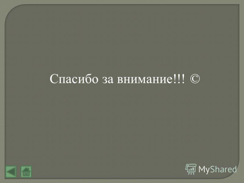 Спасибо за внимание!!! ©