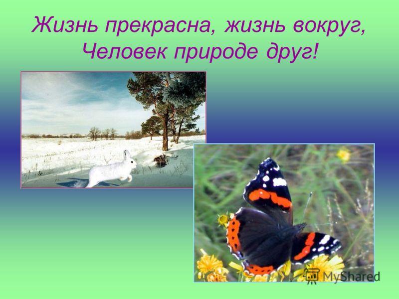 Жизнь прекрасна, жизнь вокруг, Человек природе друг!