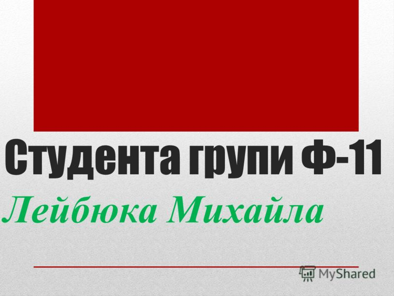 Студента групи Ф-11 Лейбюка Михайла