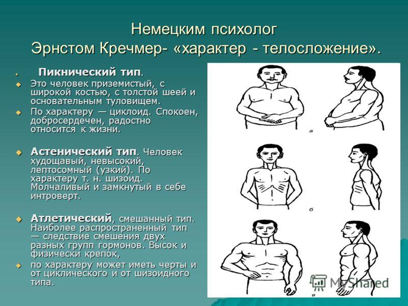 Немецким психолог Эрнстом Кречмер- «характер - телосложение». Пикнический тип. Пикнический тип. Это человек приземистый, с широкой костью, с толстой шеей и основательным туловищем. Это человек приземистый, с широкой костью, с толстой шеей и основател