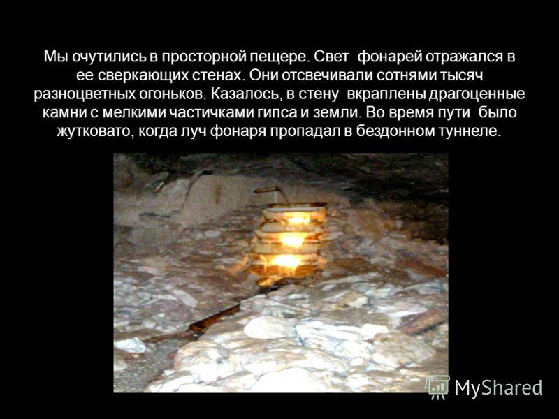 Мы очутились в просторной пещере. Свет фонарей отражался в ее сверкающих стенах. Они отсвечивали сотнями тысяч разноцветных огоньков. Казалось, в стену вкраплены драгоценные камни с мелкими частичками гипса и земли. Во время пути было жутковато, когд