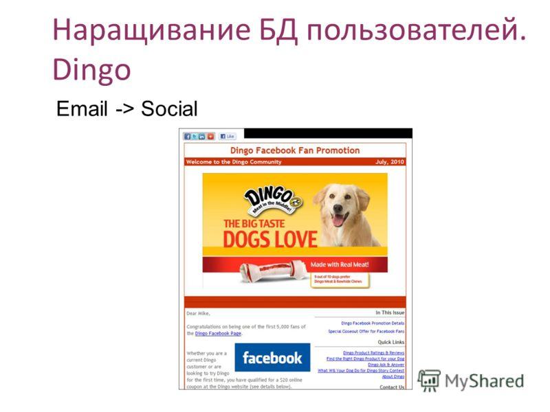 Наращивание БД пользователей. Dingo Email -> Social