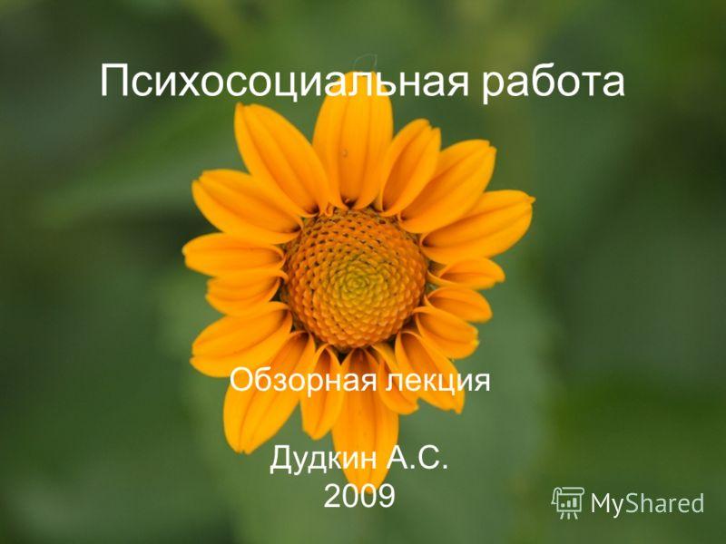 Психосоциальная работа Обзорная лекция Дудкин А.С. 2009