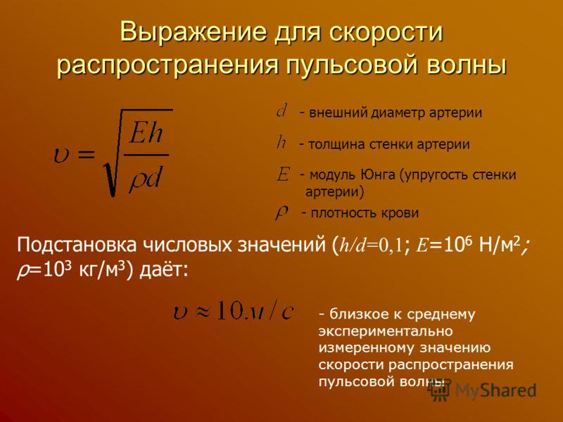 Выражение для скорости распространения пульсовой волны - внешний диаметр артерии - плотность крови - толщина стенки артерии - модуль Юнга (упругость стенки артерии) Подстановка числовых значений ( h/d=0,1 ; E =10 6 Н/м 2 ; ρ=10 3 кг/м 3 ) даёт: - бли