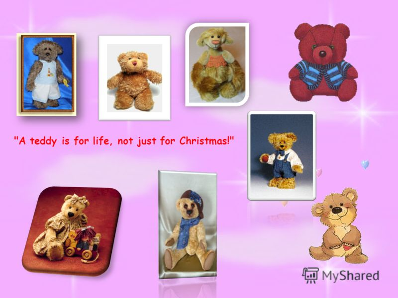 A teddy is for life, not just for Christmas!
