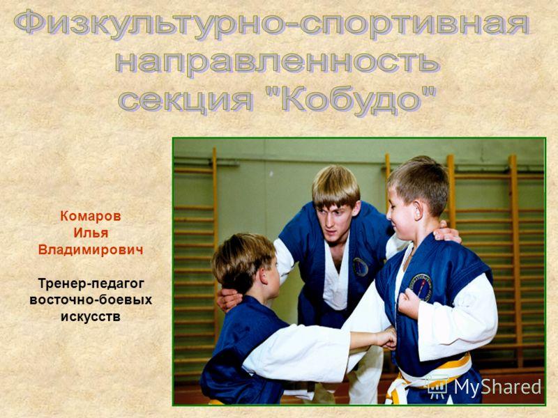 Комаров Илья Владимирович Тренер-педагог восточно-боевых искусств