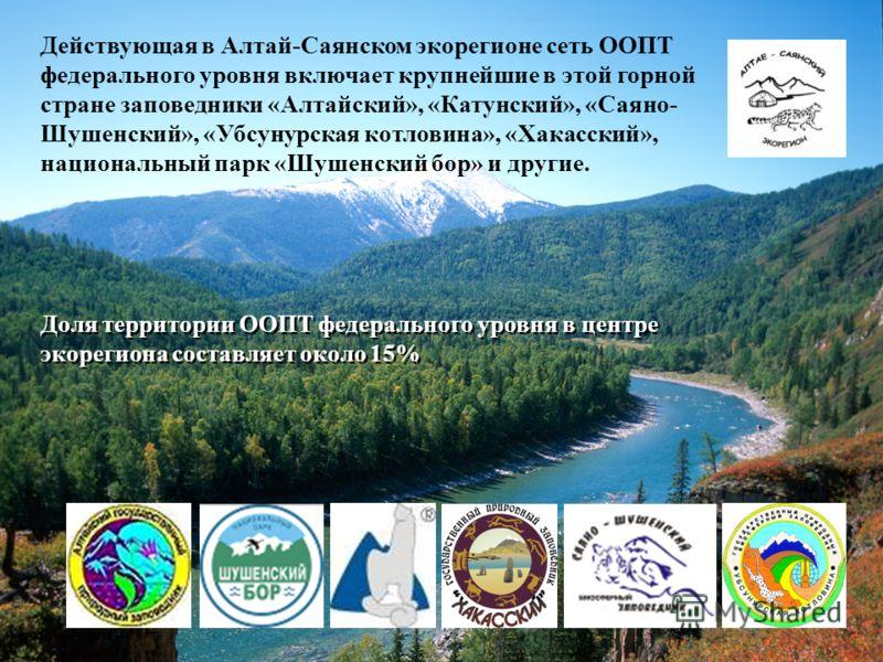 Действующая в Алтай-Саянском экорегионе сеть ООПТ федерального уровня включает крупнейшие в этой горной стране заповедники «Алтайский», «Катунский», «Саяно- Шушенский», «Убсунурская котловина», «Хакасский», национальный парк «Шушенский бор» и другие.