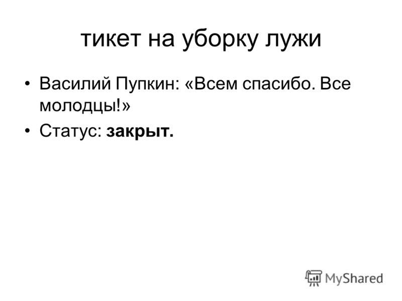 тикет на уборку лужи Василий Пупкин: «Всем спасибо. Все молодцы!» Статус: закрыт.