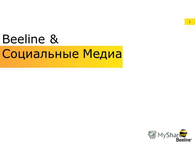 1 Beeline & Социальные Медиа