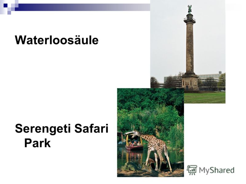 Waterloosäule Serengeti Safari Park