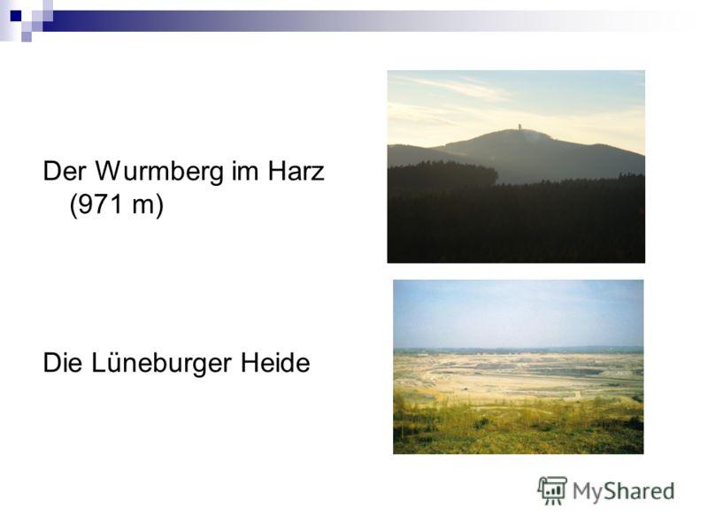 Der Wurmberg im Harz (971 m) Die Lüneburger Heide