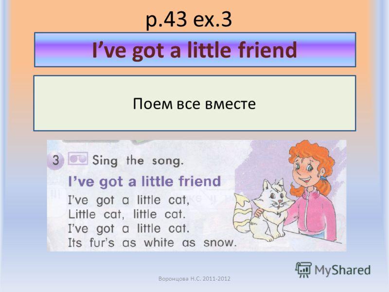 p.43 ex.3 Воронцова Н.С. 2011-2012 Поем все вместе Ive got a little friend