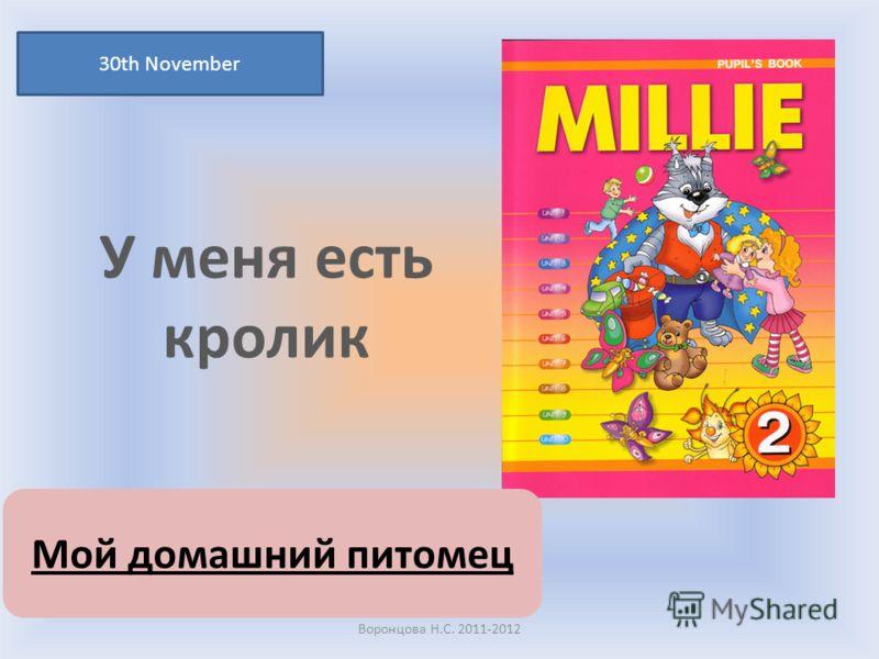 У меня есть кролик 30th November Воронцова Н.С. 2011-2012 Мой домашний питомец
