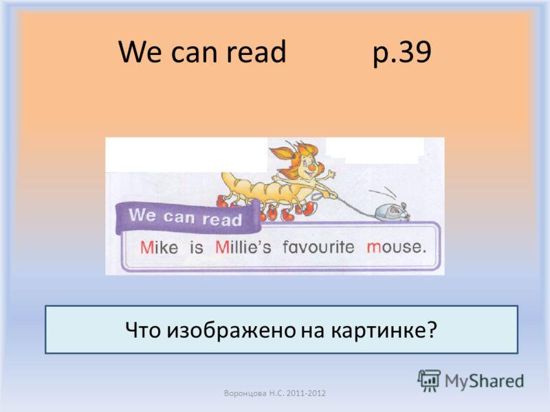 We can read p.39 Воронцова Н.С. 2011-2012 Что изображено на картинке?