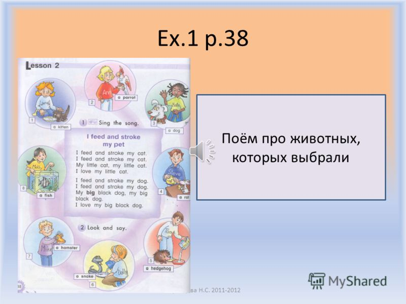 Ex.1 p.38 Воронцова Н.С. 2011-2012 Посмотрите на животных на с.38 и выберите двух, которые вам больше всего нравятся I like the dog and the kitten. What about you?