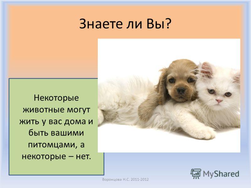 Spell the words Воронцова Н.С. 2011-2012 FeedHu g Stroke MousePuppy Kitten