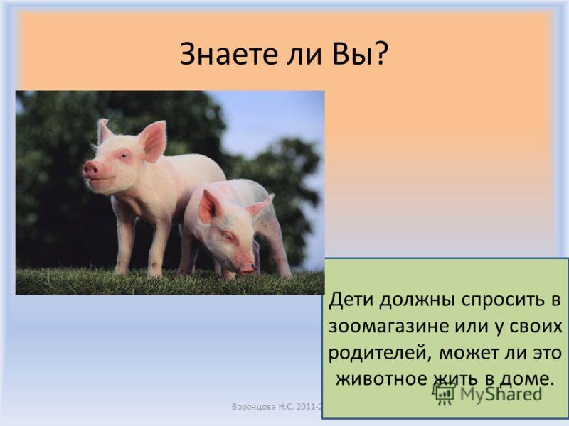 Знаете ли Вы? Воронцова Н.С. 2011-2012 Некоторые животные могут жить у вас дома и быть вашими питомцами, а некоторые – нет.