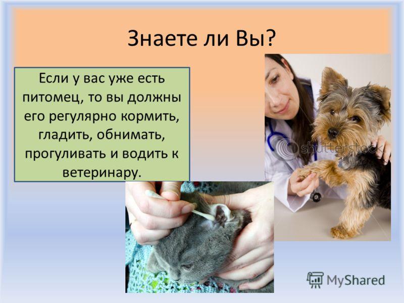 Знаете ли Вы? Воронцова Н.С. 2011-2012 Дети должны спросить в зоомагазине или у своих родителей, может ли это животное жить в доме.