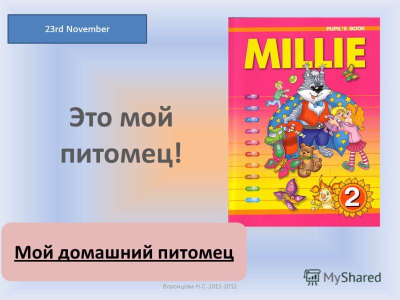 Это мой питомец! 23rd November Воронцова Н.С. 2011-2012 Мой домашний питомец