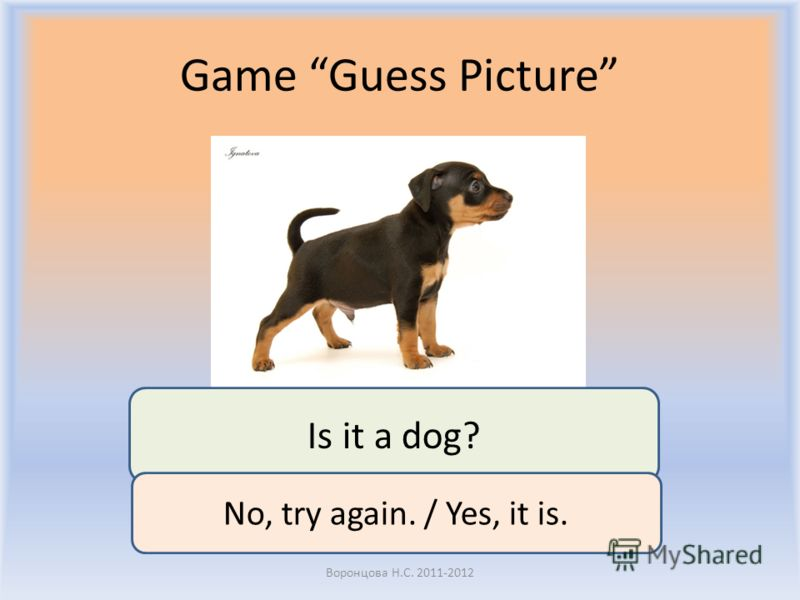 Game Guess Picture Воронцова Н.С. 2011-2012 Is it a dog? No, try again. / Yes, it is.