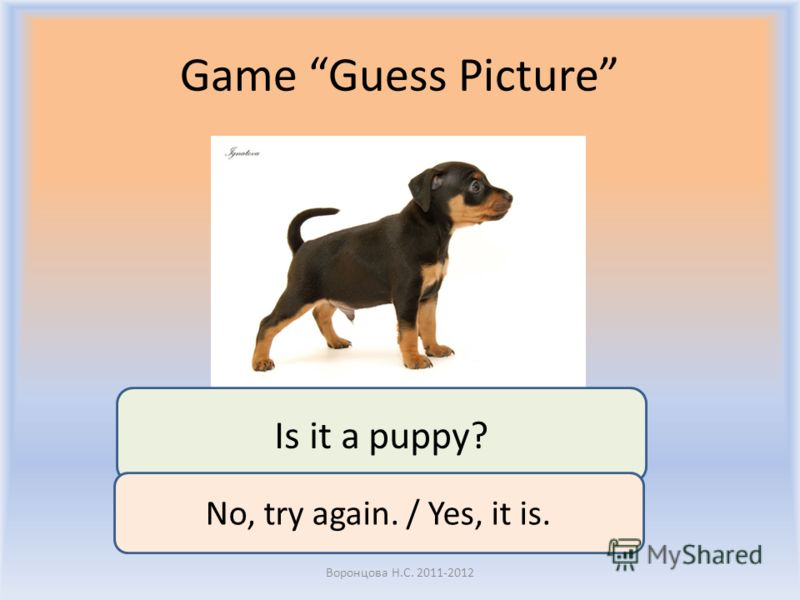 Game Guess Picture Воронцова Н.С. 2011-2012 Is it a puppy? No, try again. / Yes, it is.