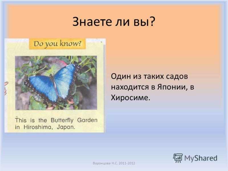 Знаете ли вы? В мире очень много садов бабочек, куда может прийти любой и посмотреть на насекомых, которые там свободно летают. Воронцова Н.С. 2011-2012