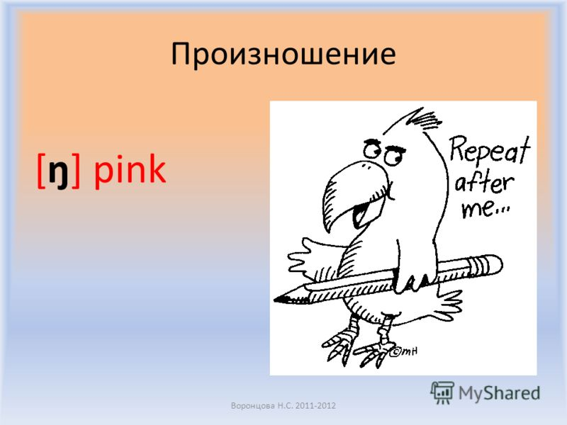 Игра «Эхо» Воронцова Н.С. 2011-2012 An umbrella Pink Grey What colour is it?