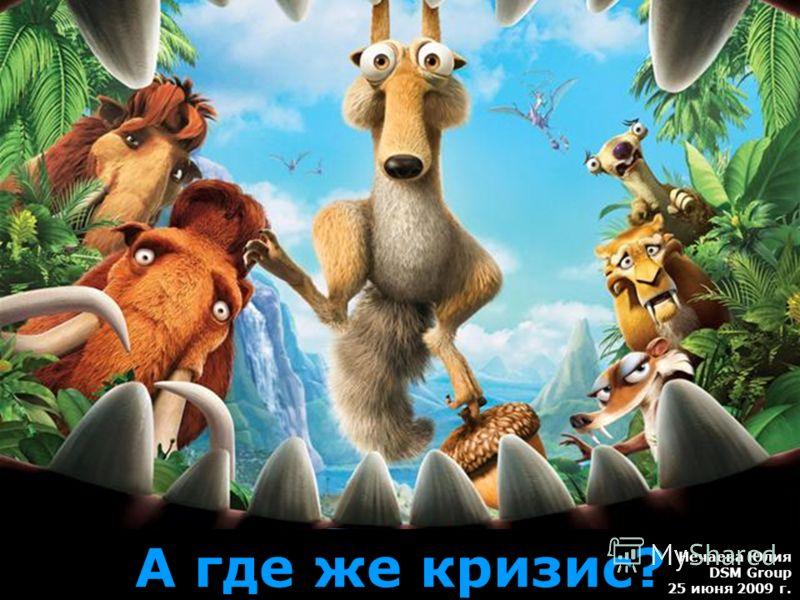 А где же кризис? Нечаева Юлия DSM Group 25 июня 2009 г.