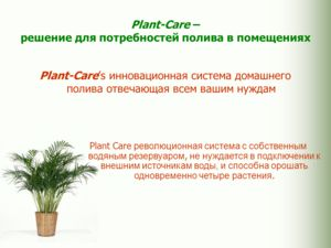 Plant-Care – решение для потребностей полива в помещениях Plant-Cares инновационная система домашнего полива отвечающая всем вашим нуждам Plant Care революционная система с собственным водяным резервуаром, не нуждается в подключении к внешним источни
