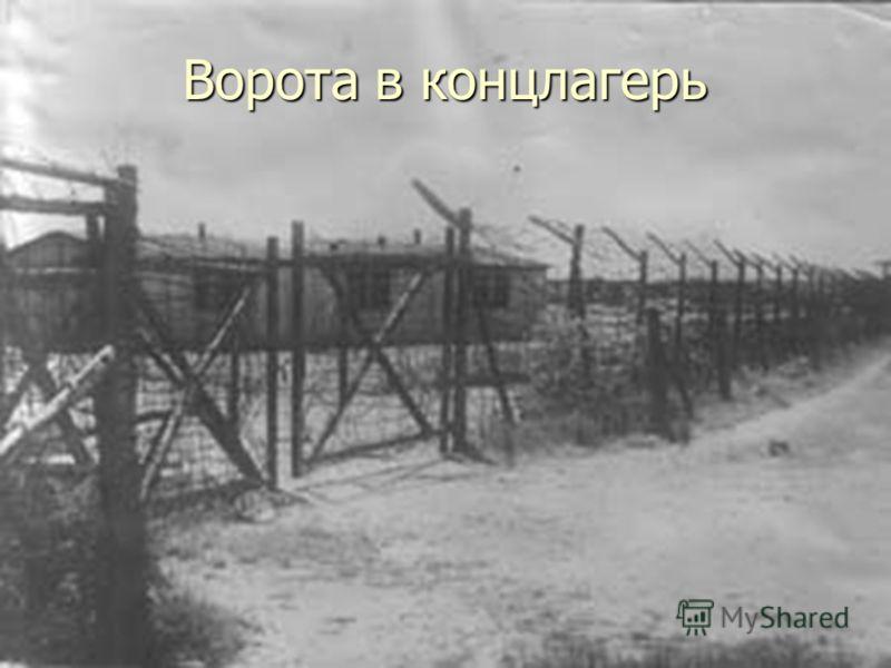 Ворота в концлагерь