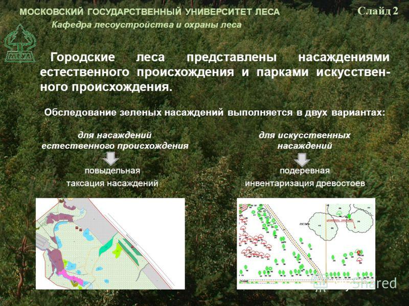 Городские леса представлены насаждениями естественного происхождения и парками искусственного происхождения. Обследование зеленых насаждений выполняется в двух вариантах: повыдельная таксация насаждений подеревная инвентаризация древостоев для насажд