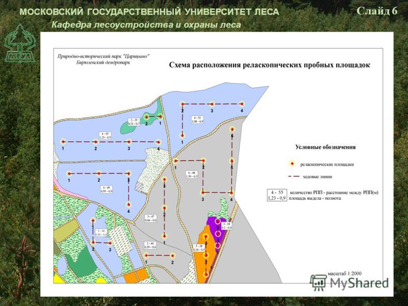 МОСКОВСКИЙ ГОСУДАРСТВЕННЫЙ УНИВЕРСИТЕТ ЛЕСА Кафедра лесоустройства и охраны леса Слайд 6