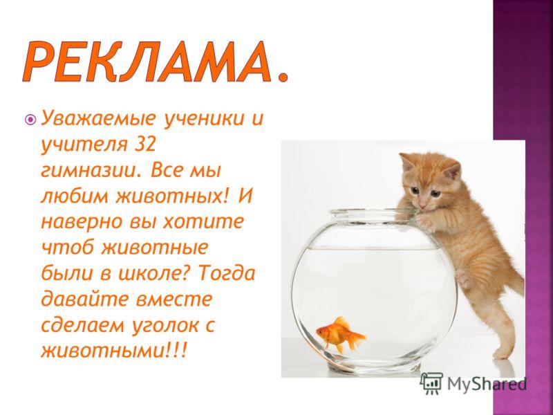 Уважаемые ученики и учителя 32 гимназии. Все мы любим животных! И наверно вы хотите чтоб животные были в школе? Тогда давайте вместе сделаем уголок с животными!!!