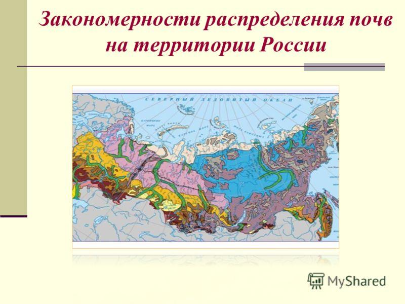 Закономерности распределения почв на территории России