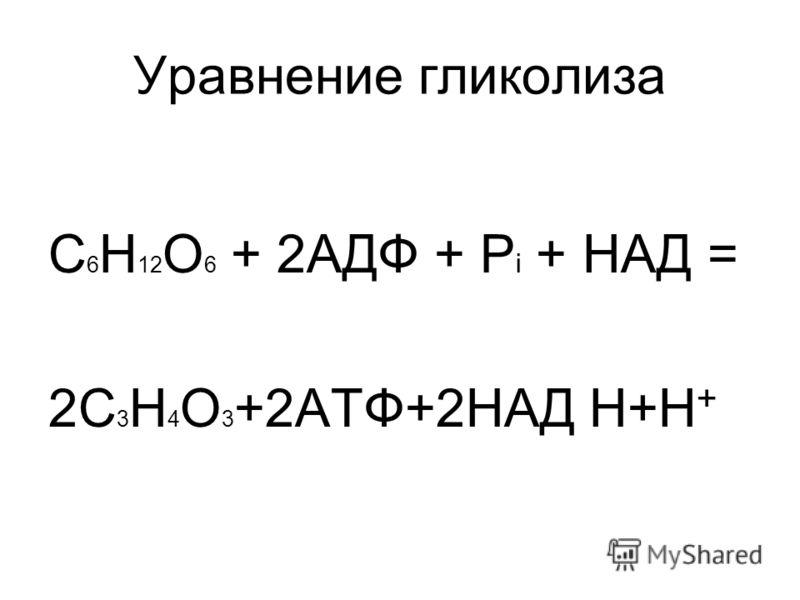 Уравнение гликолиза С 6 Н 12 О 6 + 2АДФ + Р i + НАД = 2С 3 Н 4 О 3 +2АТФ+2НАД Н+Н +