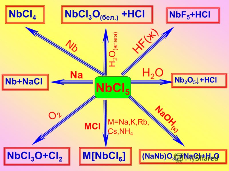 NbCl 5 HF(ж) Nb NaОН (к) H2OH2O Na O2O2 MCl NbF 5 +HCl NbCl 4 (NaNb)O 3 +NaCl+Н 2 О Nb+NaCl Nb 2 О 5+НCl M[NbCl 6 ]NbCl 3 O+Cl 2 M=Na,K,Rb, Cs,NH 4 H 2 O (влага) NbCl 3 O (бел.) +НCl
