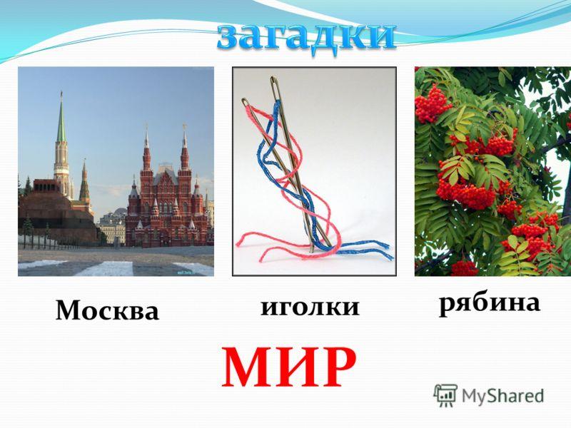 Москва иголки рябина МИР