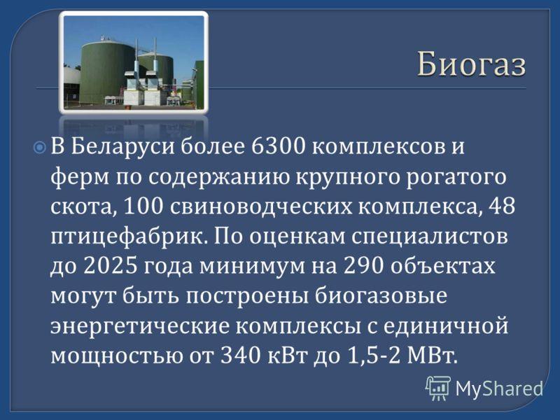 В Беларуси более 6300 комплексов и ферм по содержанию крупного рогатого скота, 100 свиноводческих комплекса, 48 птицефабрик. По оценкам специалистов до 2025 года минимум на 290 объектах могут быть построены биогазовые энергетические комплексы с едини