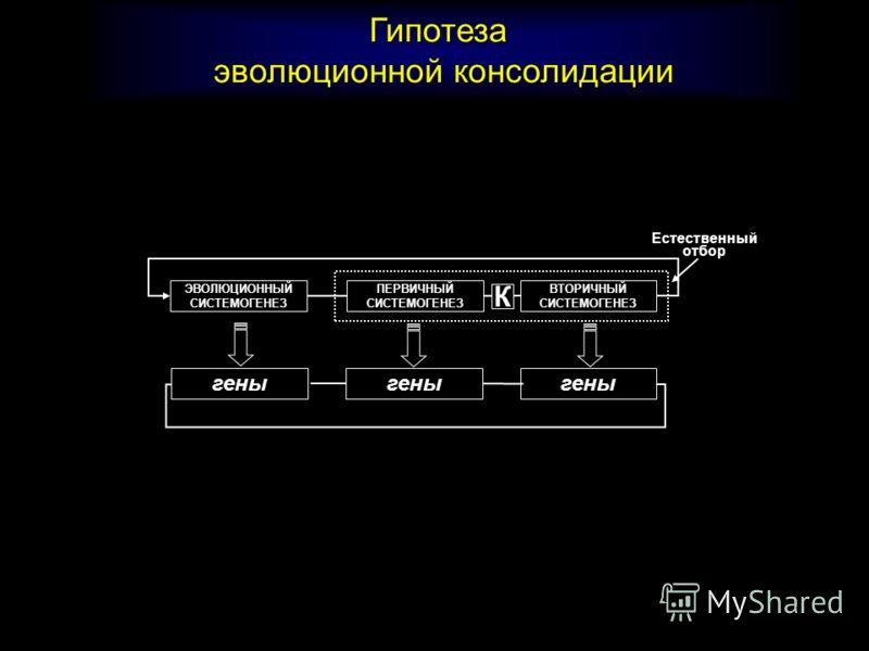 Генетическая ассимиляция фрагментов вторичной функциональной системы за счет внутрисистемной гетерохронии К К А д а п т и в н ы й р е з у л ь т а т Ассимиляция