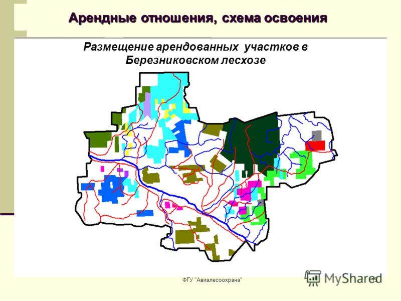 ФГУ Авиалесоохрана15 Арендные отношения, схема освоения Размещение арендованных участков в Березниковском лесхозе