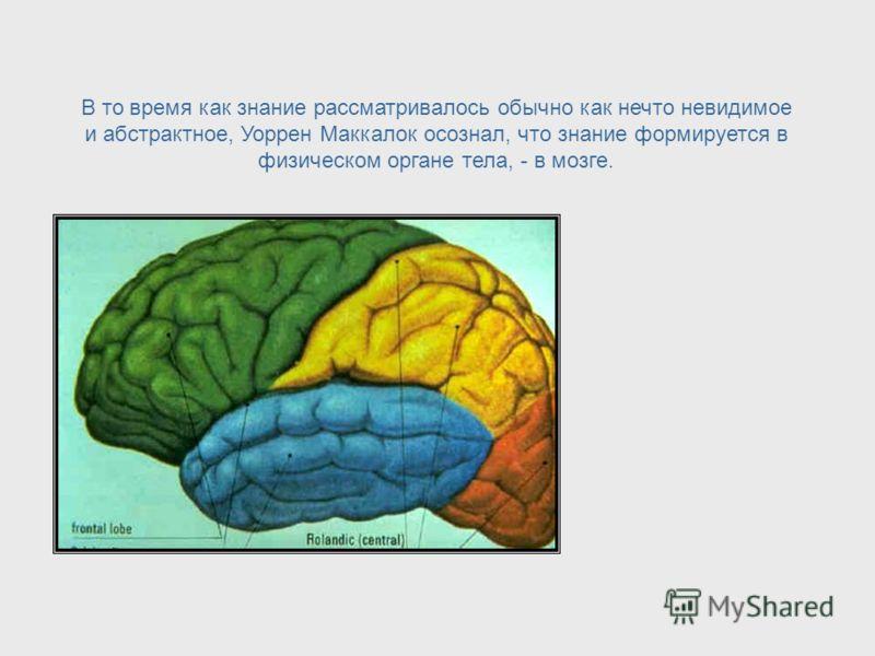 Эпистемология = Наука о знании Уоррен Маккалок заметил, что существует связь между наукой нейрофизиологией и областью философии, названной эпистемологией, которая является наукой о знании. Epistemology = Study of Knowledge
