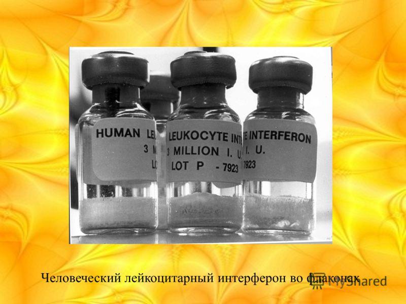 Человеческий лейкоцитарный интерферон во флаконах