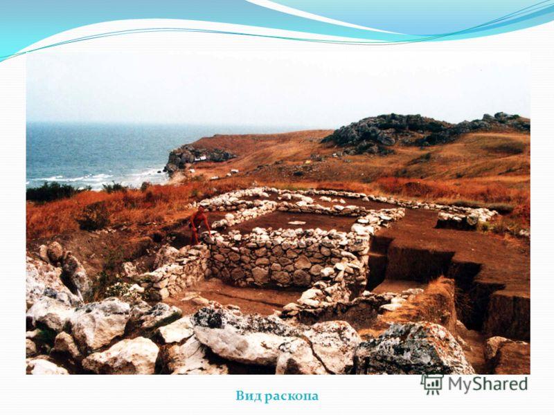 Вид раскопа