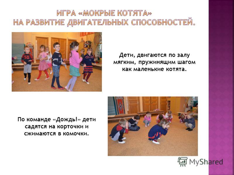 По команде «Дождь!» дети садятся на корточки и сжимаются в комочки. Дети, двигаются по залу мягким, пружинящим шагом как маленькие котята.