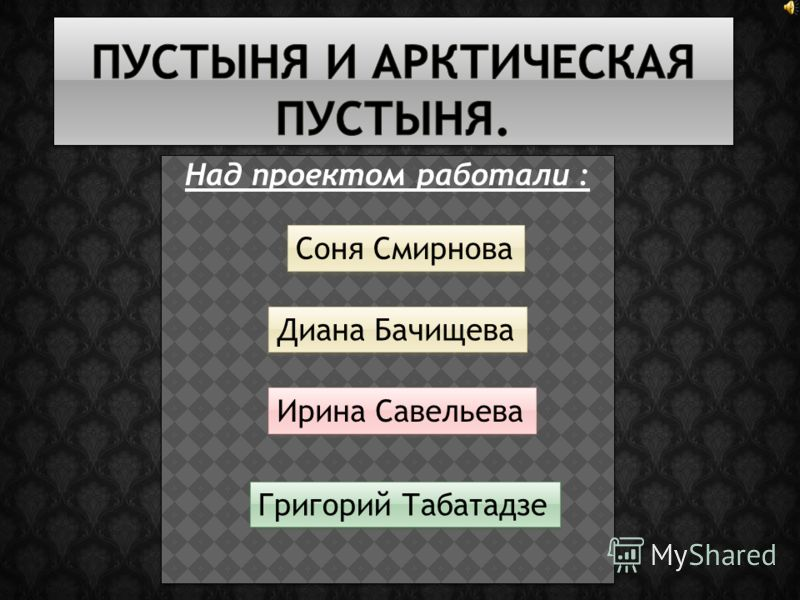 Над проектом работали : Соня Смирнова Диана Бачищева Ирина Савельева Григорий Табатадзе
