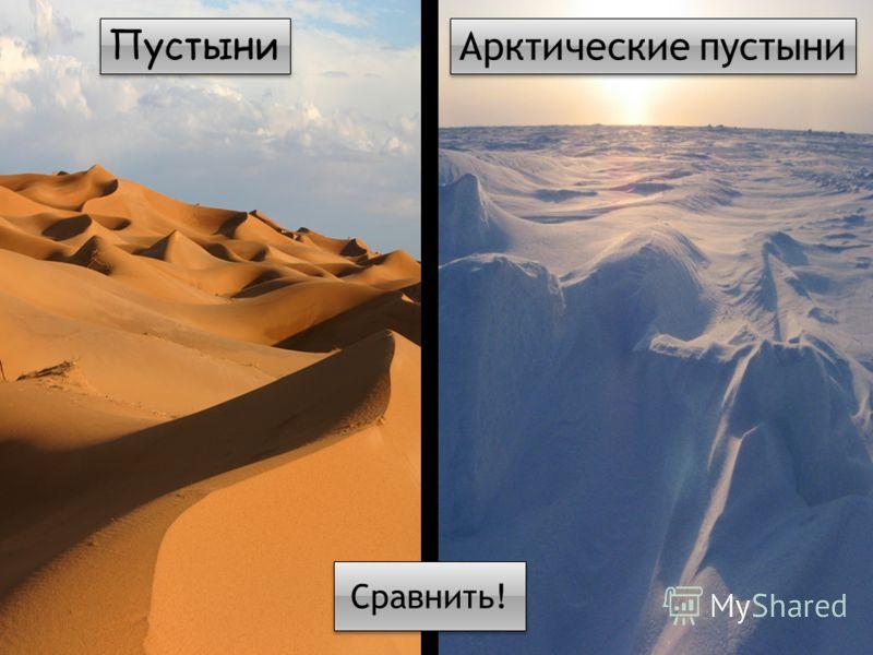 Пустыни Арктические пустыни Сравнить!